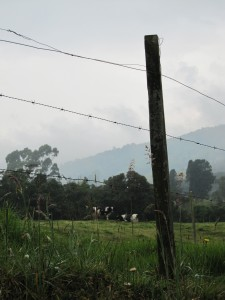 La Vista De Aqui - Medellin - 06