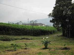 La Vista De Aqui - Medellin - 02